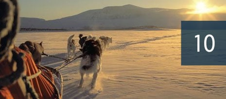 10 - dogs pulling a sled across open snowy area with mountains in background