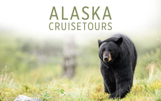 Alaska Land & Sea Vacations