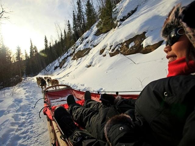Ever wanted to go dog sledding? This activity is a popular excursion on Alaskan cruises.