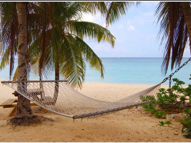 A hammock waits for you in the Grand Cayman Islands.