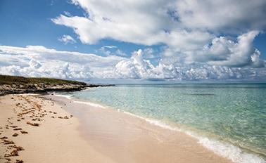 加勒比海度假趣與全覽Turk