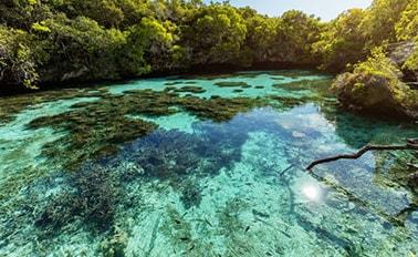 新加勒多尼亞&萬那杜