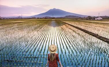 日本探險家之旅&環遊北海道