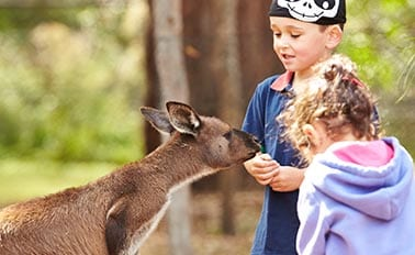 澳洲度假趣