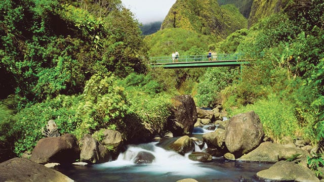 Iao Valley State Park In Maui Island Hawaii