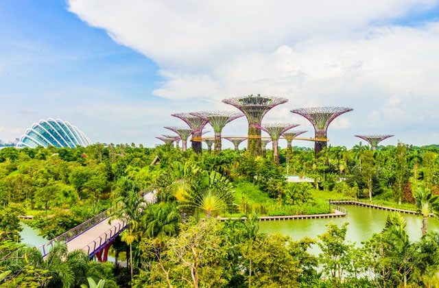 Gardens By The Bay: el hito de Singapur
