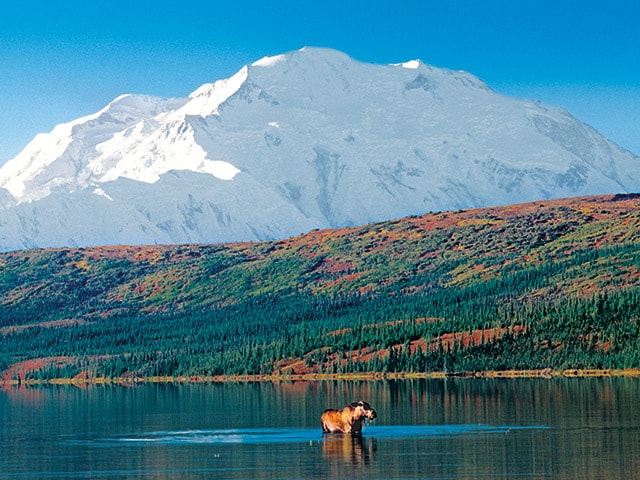 Alaska National Parks – Princess Cruises