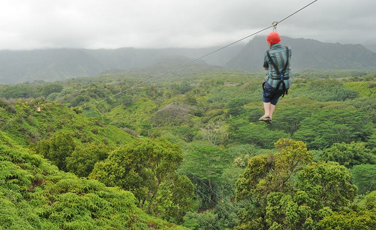 Zip-lining above the Tropical Forests