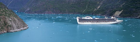 Alaska Cruise Ship in Tracy Arm Fjord - Princess Cruises