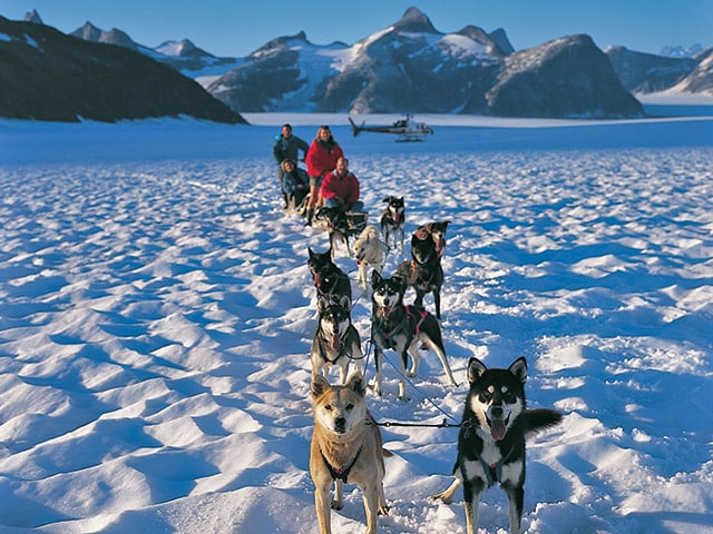 Glacier Landing and Dog Sledding – Princess Cruises