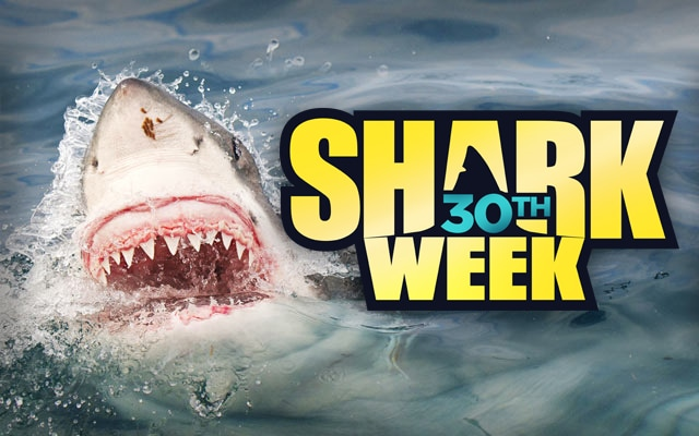 Shark Week logo. Shark's face with open mouth emerging from the ocean