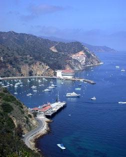 Princess Cruises Catalina Island California - Catalina cruises
