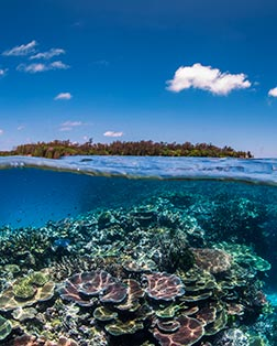 Main port photo for Conflict Islands, Papua New Guinea
