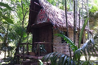 Princess Cruises : Excursion - Ahioma Cultural Village
