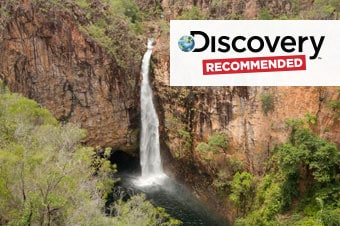 Litchfield National Park: Termite Mounds & Falls