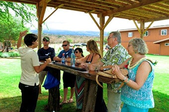 Upcountry Maui - Lavender Farm, Cheese & Organic Distillery  Thumbnail image 2