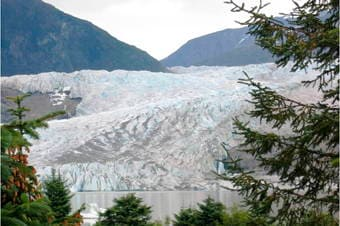Exclusive Mendenhall Glacier, Rainforest Garden & State Museum Thumbnail image 2