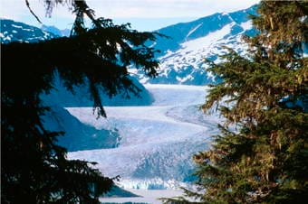 Grand Tour by Land: Glacier Gardens, Hatchery & Mendenhall Glacier Thumbnail image 2