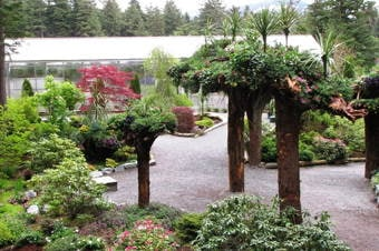 Grand Tour by Land: Glacier Gardens, Hatchery & Mendenhall Glacier Thumbnail image 3