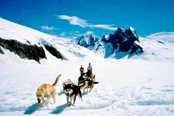 Dog Sledding on the Mendenhall Glacier by Helicopter Thumbnail image 2