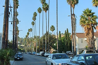 Easy Los Angeles Thumbnail image 2