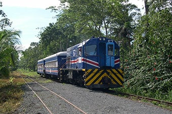 Train Ride, Tortuguero Canals & Countryside image