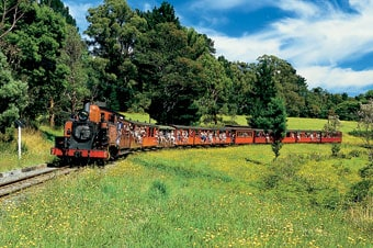 Puffing Billy & Dandenong Ranges Enlarged image 1