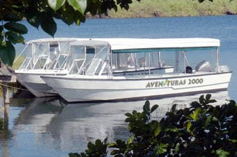 Monkey & Wildlife Nature Cruise on Gatun Lake  Thumbnail image 2