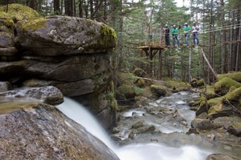 Grizzly Falls Ziplining Expedition Thumbnail image 3