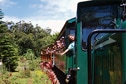 Grove Farm & Kauai Plantation Railway