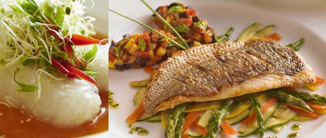 Asian summer rolls garnished with vegetables and sauce; seared fish over steamed vegetables