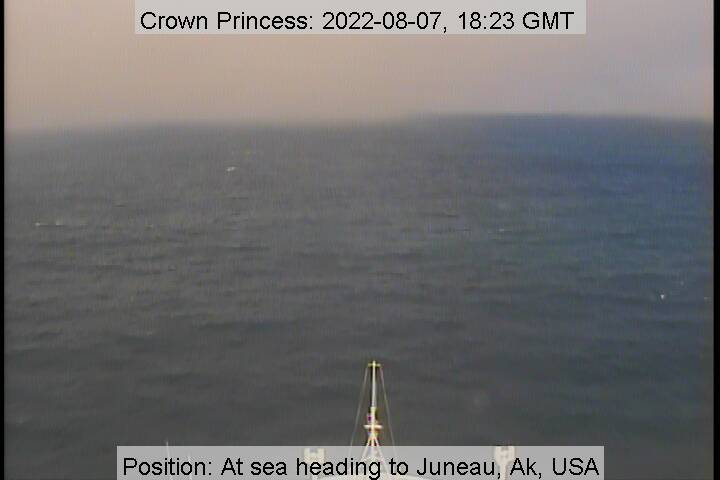 Crown Princess Bridge Cam