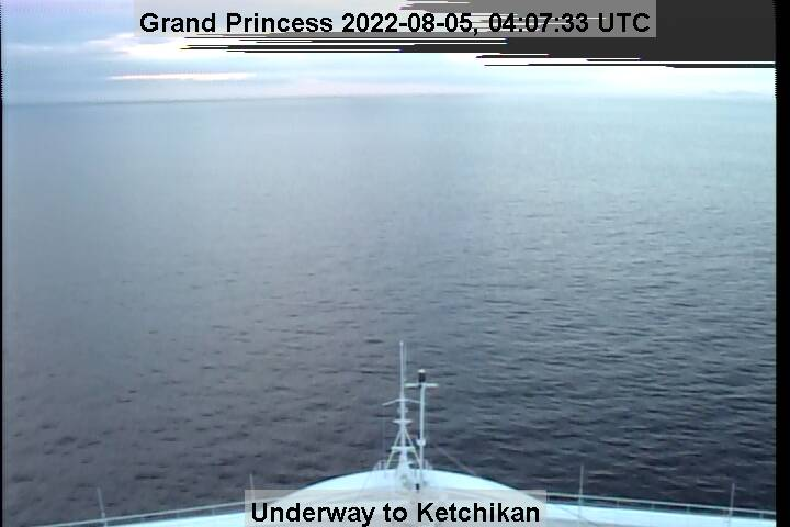 Bridge Camera on Grand Princess