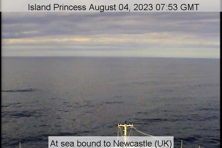 Island Princess Bugcam
