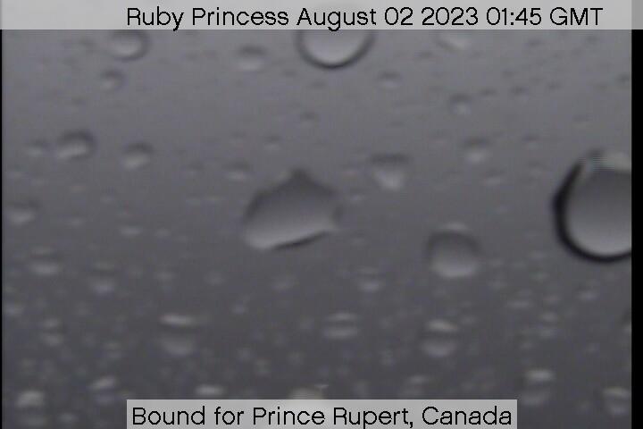 Ruby Princess web cam