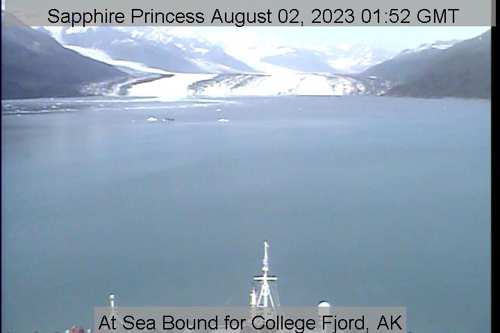 webcam du bateau Sapphire Princess vue avant